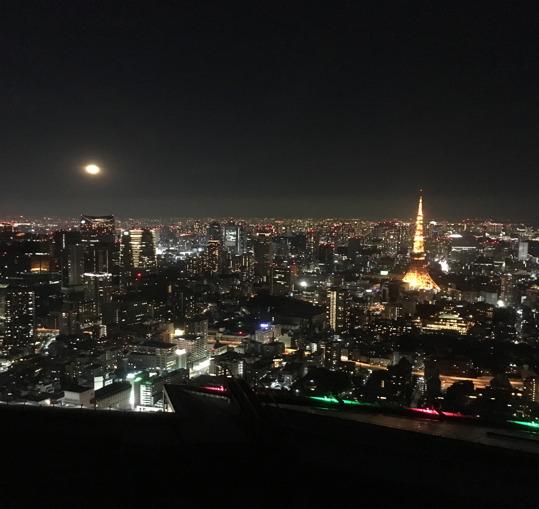 六本木ヒルズ夜景【森タワー】