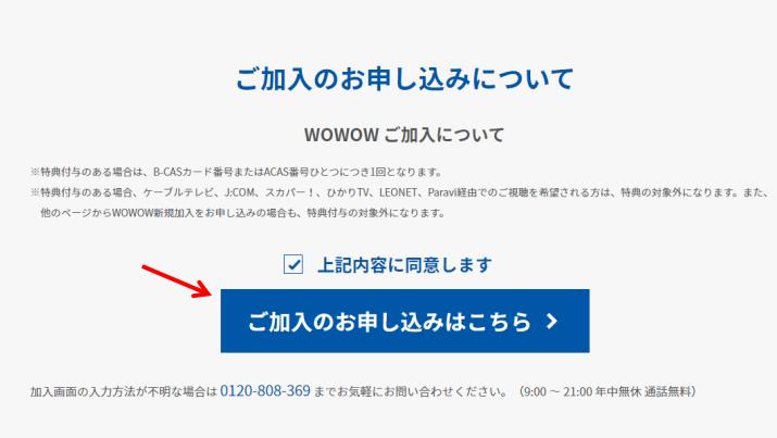 手順①:公式サイトに入る